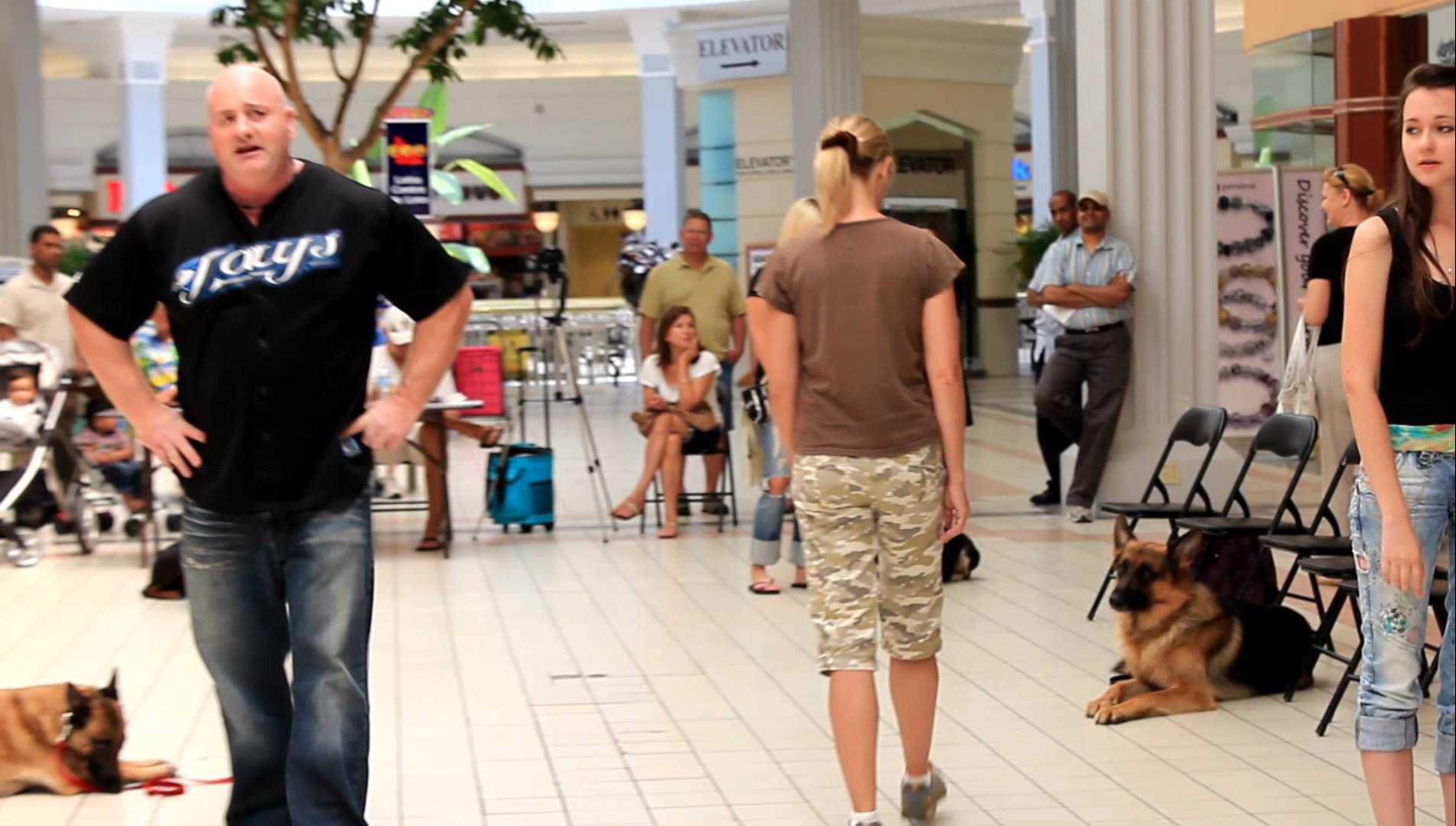 BEYOND THE LEASH K9 DOG OBEDIENCE SHOW IN A LOCAL MALL part 1