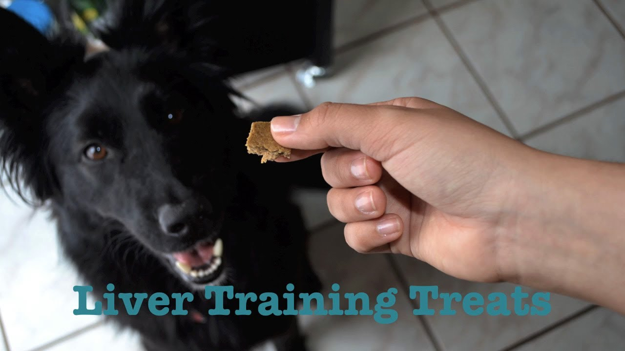 Homemade Dog Treats: Chicken Liver Training Treats For Dogs