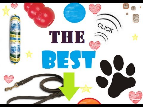 Toys, Treats & Equipment TRAINER Recommended – kong, clickers, toys and more